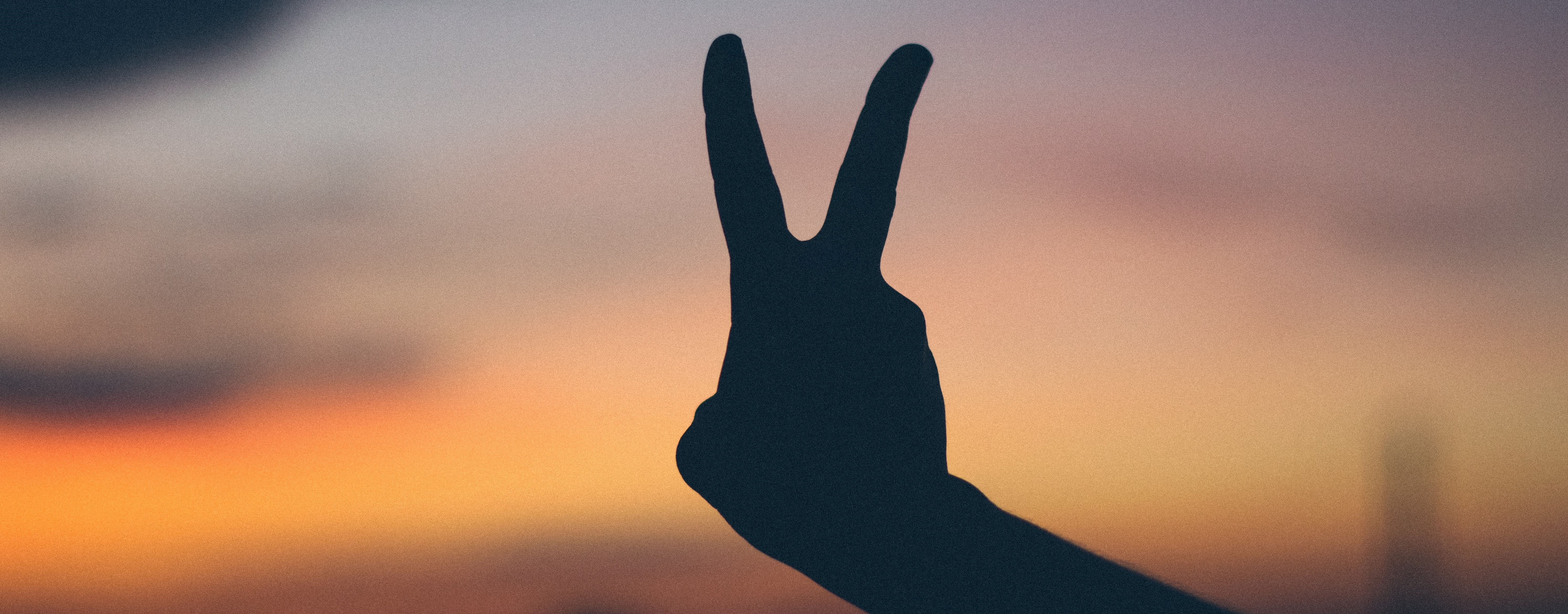 hand showing two fingers as a sign of peace